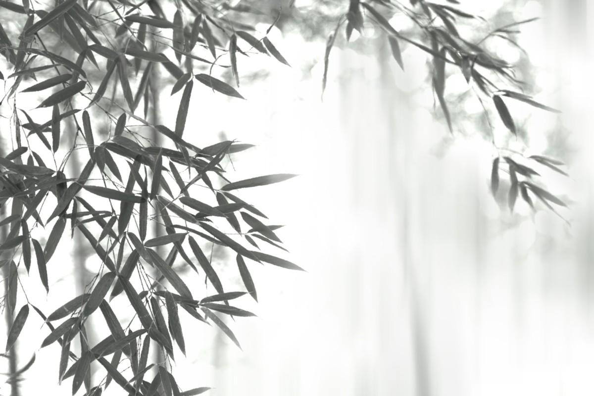 ザ・シークレットスパ・箱根翡翠|箱根仙石原のスパ&マッサージサロン